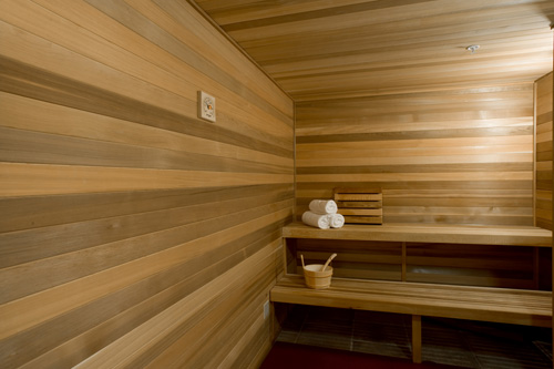 Ladies Sauna at Complexions Spa in Albany NY