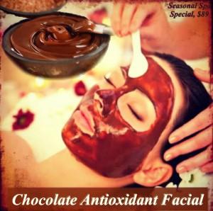 Chocolate Antioxidant Facial - Complexions Spa