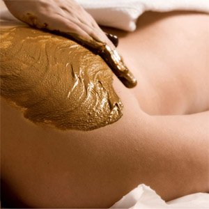 Mystik Inka Treatment in Saratoga & Albany NY at Complexions Spa