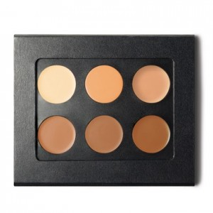 contour makeup kit at complexions