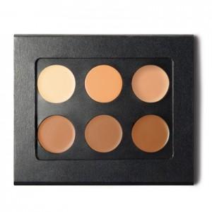 contour makeup kit at complexions